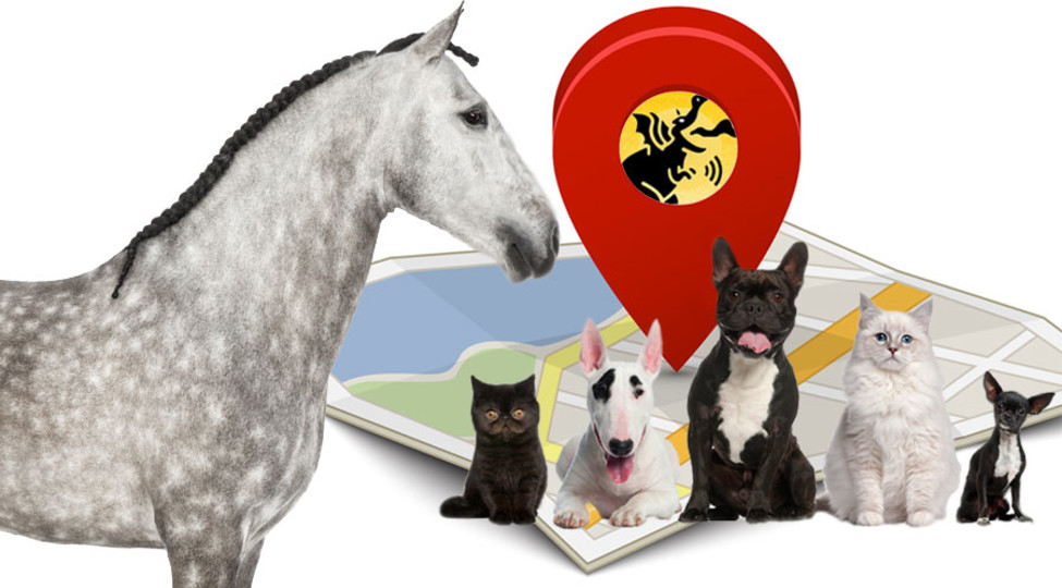 Active GPS Pet & Animal Tracking with BeastOwner